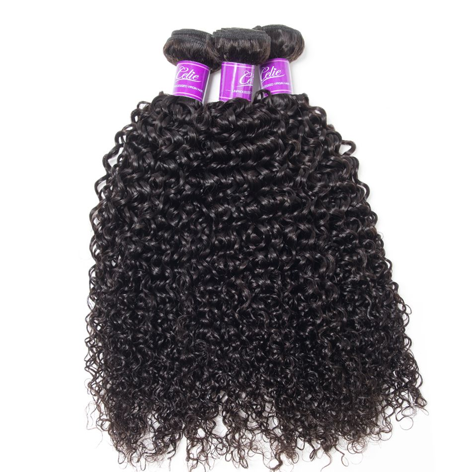 Curly Hair 3 Bundles With Closure